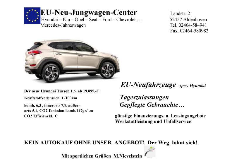 TV-Blau-Weiss-Hoengen-Sponsor-EU-Neu-Jungwagen-Center_werbetafel